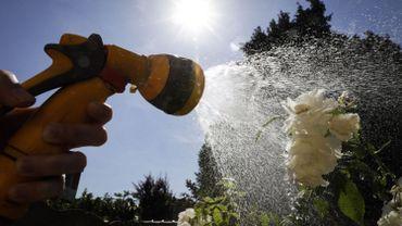 Sécheresse: des restrictions de l'usage de l'eau dans onze communes wallonnes