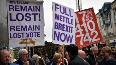 Brexit: nouvelle campagne pour un référendum sur l'accord de sortie