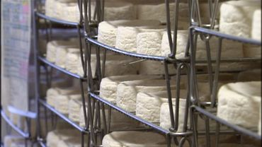Le camembert de Normandie: un savoir-faire artisanal