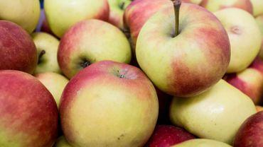 Un supermarché sanctionné à Cuba pour avoir vendu 15.000 pommes à un seul client