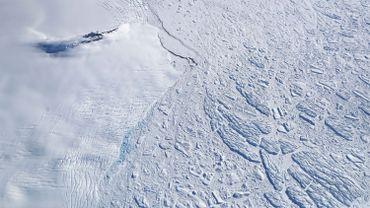 Une empreinte de dinosaure vieille de 200 millions d'années découverte en Antarctique