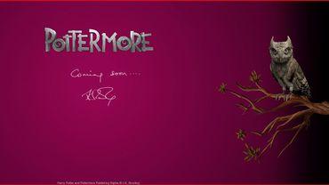 L'écran du site de Pottermore annonce l'arrivée prochaine du nouveau projet de J.K. Rowlings
