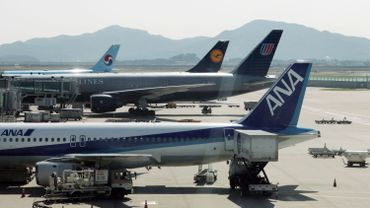 L'allemande Lufthansa et la japonaise ANA Holdings, notamment, ont annoncé en juillet des chiffres d'affaires en recul ou des abaissements de leurs prévisions annuelles de bénéfices.
