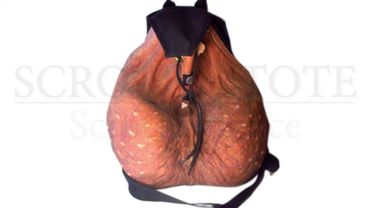 Un sac en forme de testicules