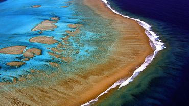 La Grande Barrière de corail subit son 3e blanchiment massif en 5 ans