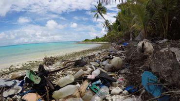 Pour une scientifique, une découverte en un lieu aussi isolé que les Cocos est source de préoccupation majeure