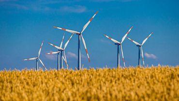 Année record pour les énergies renouvelables à travers le monde