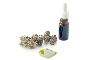La recherche sur les usages thérapeutiques des cannabinoïdes est en plein essor.