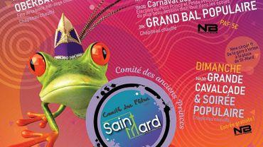 1er Carnaval de Virton et Saint-Mard