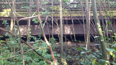 Schaerbeek : les mystérieux vestiges d'un ancien viaduc