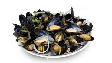 La saison des moules de Zélande est lancée...en retard: et le prix?
