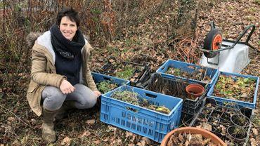 Stéphanie de Bellefroid espère pouvoir vivre de son activité horticole d'ici quelques mois.