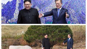 Rencontre au sommet entre les dirigeants des deux Corées