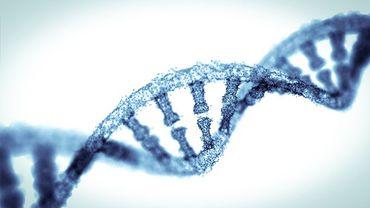 Anti-âge : au bout des chromosomes, la clé de la lutte contre les pathologies liées à l'âge