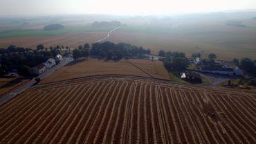 Agriculture et urbanisation exercent une étreinte importante sur une biodiversité qui se racrapote