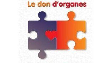 De moins en moins de Belges refusent de donner leurs organes.
