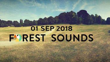Le Forest Sounds Festival repart pour une deuxième édition