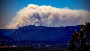 Une large colonne de fumée observée le 7 novembre dernier au Wollemi National Park, une centaine de kilomètres à l'Ouest de Sydney (Australie).