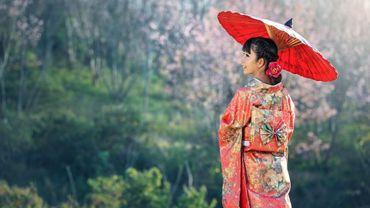 Mangas, sushis, arts martiaux, geishas, estampes... les clichés sont nombreux quand on parle du Japon