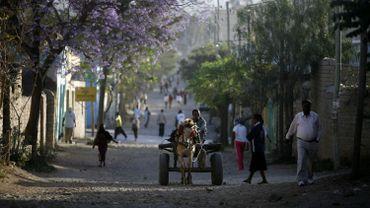 Une loi bannissant le tabac des lieux publics a été votée en 2014 par le parlement éthiopien, mais Mekele est la première ville à l'appliquer.