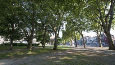 Favoriser la végétation en ville pour réduire les effets de la canicule?