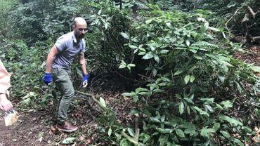 Avec l'aide de plusieurs riverains du parc Raspail, Nicola da Schio a nettoyé le parc ce weekend pour permettre sa réouverture temporaire