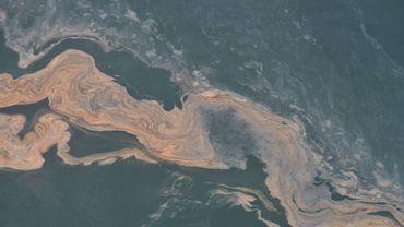 Floraison de Noctiluca¬ sur le banc de sable de Buitenratel, 15 août 2020, documenté depuis l'avion de surveillance de l'IRSNB