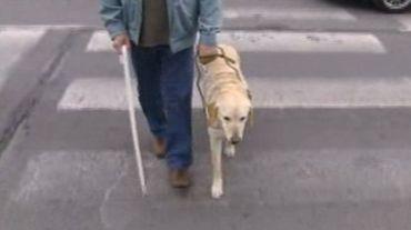DuoDay: une journée pour l'emploi des personnes handicapées