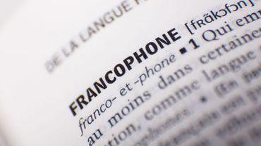 """En jeu ou sur internet, la diversité des """"langues françaises"""" fait florès"""