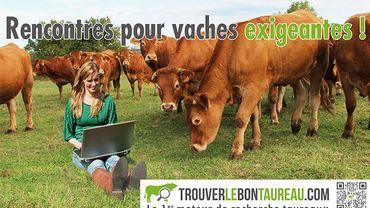 site de rencontre pour vache