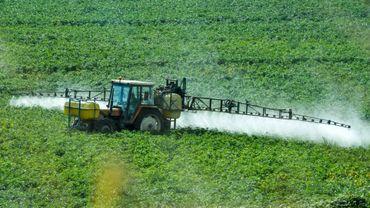 Le renouvellement de la licence dans l'UE du glyphosate, l'un des herbicides les plus utilisés dans le monde, accusé de provoquer le cancer, fait l'objet d'une féroce bataille à Bruxelles avant que l'autorisation actuelle ne s'achève fin décembre.