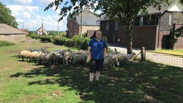 """L'élevage de moutons, Marc Rémy est tombé dedans quand il était petit. """"Un peu comme Obélix."""""""