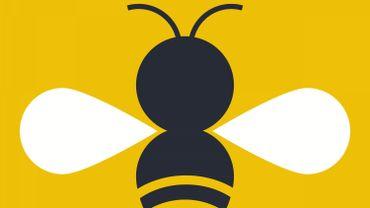 Les abeilles, meilleures alliées de Kim et Michaël