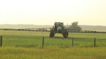 Y a-t-il un lien entre les cas de cancers et l'utilisation de pesticides dans les champs?
