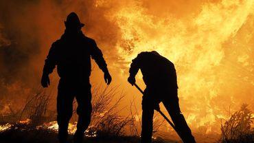 Ces feux qui à la fois sont provoqués par la crise écologique et qui y contribuent