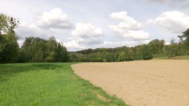 Le terrain sur lequel la province veut aménager ce bassin est exploité par la ferme du Petit-Sart