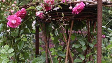Un goût sûr pour l'aménagement du jardin