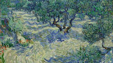 """Une cigale a été découverte dans la peinture épaisse de """"Olive Trees"""" de Vincent van Gogh par un conservateur du musée d'Art Nelson-Atkins à Kansas City, dans le Missouri."""