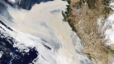 Incendies en Californie 765dd4ee5ca87f2f942614dff2efe00f-1599816528