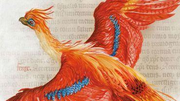 """Phoenix"", illustration de Jim Kay exposée dans le cadre de ""Harry Potter: A History of Magic"" à la British Library"