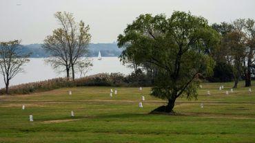 Des tombes à Hart Island, dans le Bronx, le 25 octobre 2019 à New York