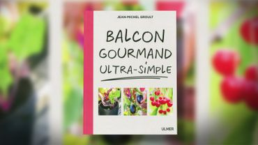 "Livre : ""Balcon gourmand ultra-simple"""