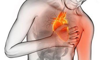 Doc Geo : Les problèmes cardiovasculaires