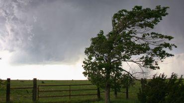 Après Ciara, place à la tempête Dennis et ses rafales de vent jusqu'à 100 km/h