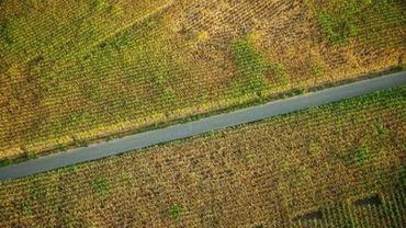 Les agriculteurs wallons touchés par la sécheresse de 2018 seront finalement payés en juin