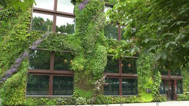 Le mur végétal du musée du quai Branly à Paris