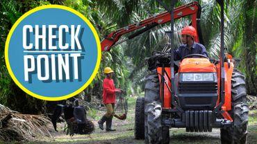Check Point: l'Union européenne discute-t-elle en vue d'une sortie de l'huile de palme?