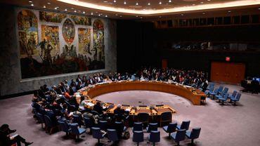Conseil de sécurité des Nations-Unies.