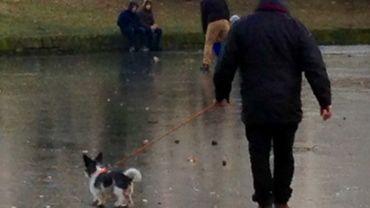 Les promeneurs dangereux ce weekend dans le parc de la Boverie
