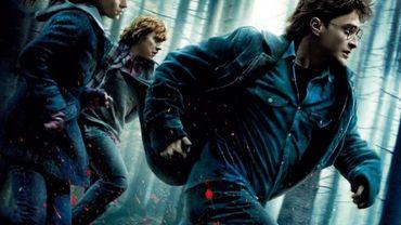 """""""Harry Potter et les reliques de la mort"""" 1ère partie, le danger est partout !"""